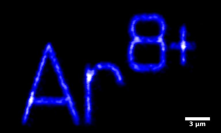 Confocal microscopy image